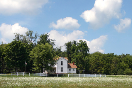 average rural American home in summer under a blue sky with a field of flowers in front