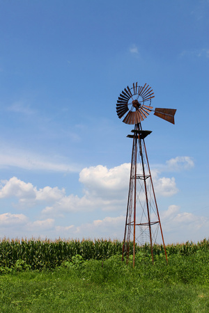 windmill at the edge of a field of corn on a bright summer day Фото со стока