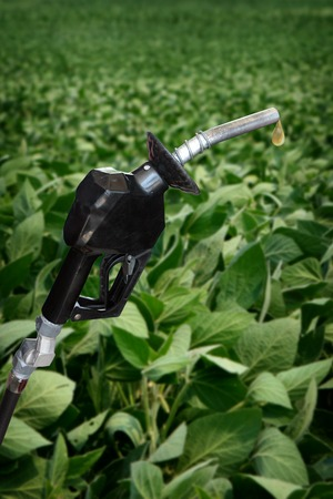 gasoline nozzle with droplet and soybean field in background