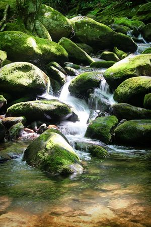 small cascade flowing over rocks