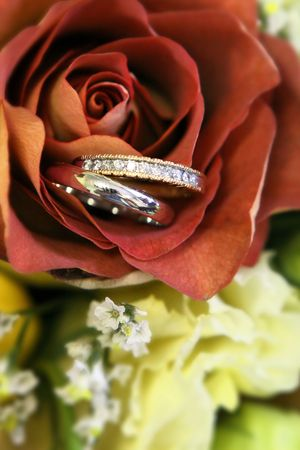 wedding bands: dos bandas de boda escondido en una rosa