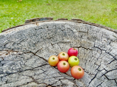 dimming: Fruit in Thailand are arranged on old wood. Stock Photo