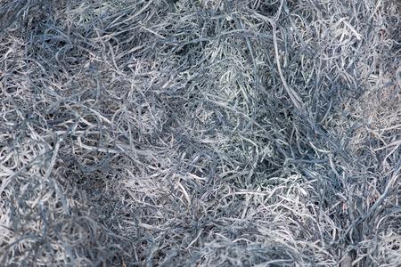 burn down grass background