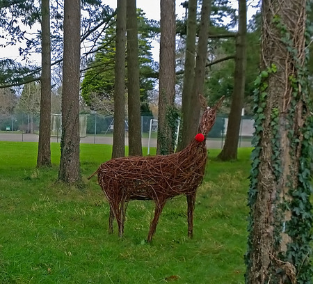 Raindeer made from wicker in a copse of trees