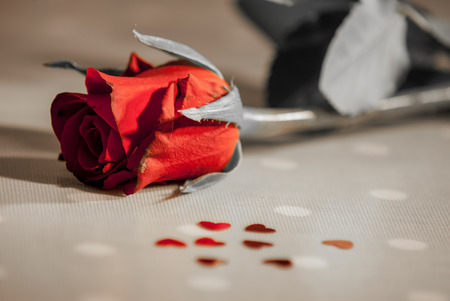 mariage: Roses, champagne, petal and heart shaped confeti, some effects used to remove certain colours from image and median noise reduction also used on some images to produce a faded look,