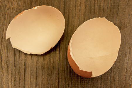 days gone by: Egg shells shown lying on a wooden with marks inside counting down the days till hatching,