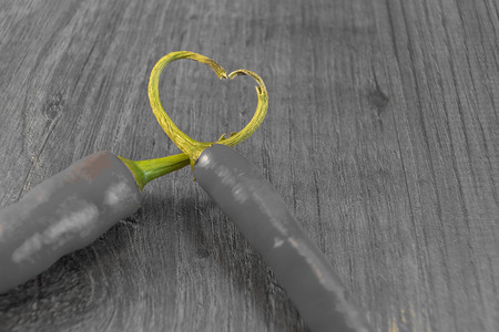 aniversary: Showing 2 chillies with their stalks placed together to form a heart Stock Photo