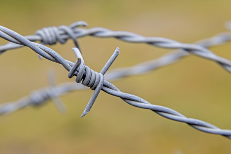 barbed hook wires: Showing a barb wire fence in a field Stock Photo