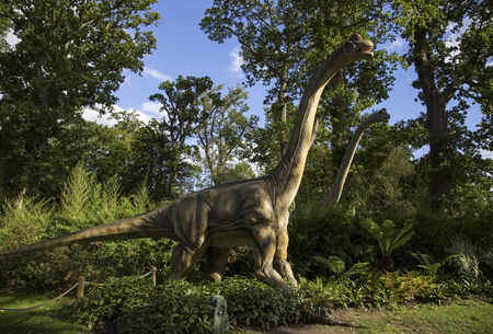 brontosaurus: Longleat, Wiltshire, UK September 25th 2015 - Showing a realistic looking Brontosaurus  Brachiosaurus dinosaur at Longleat safari park Editorial
