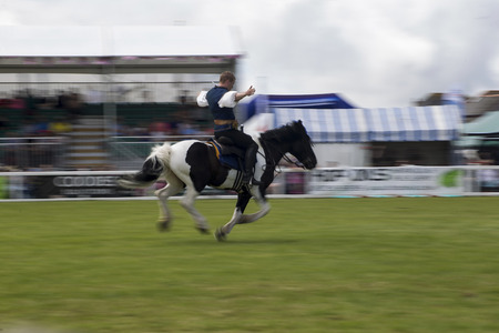 cantering horse: Wadebridge, Cornwall, UK, June 11 2016 - Showing horse riders, riding and doing several riding tricks with horses on green grass field at a local show.