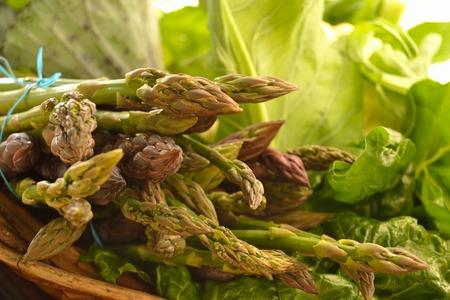 Fresh Asparagus Reklamní fotografie
