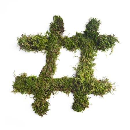A hashtag symbol made of moss against a white background  photo
