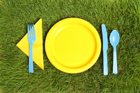 Picnic utensils and plate on real green grass.