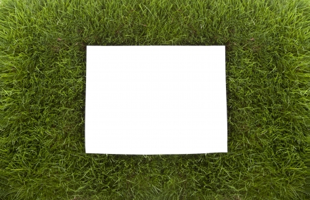 A sheet of white paper for text sits ontop of a real bed of grass  Copy Space  Imagens