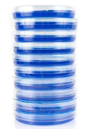 balanza de laboratorio: Una pila de placas de Petri hace una abstracci�n de rayas azules Foto de archivo
