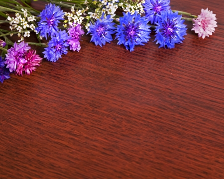 Several cut Bachelors button flowers lit on a shiny wood surface to create a frame for copy.