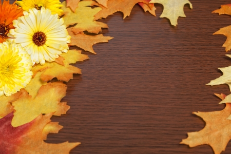Fall flowers and leaves create a frame on a wood board.