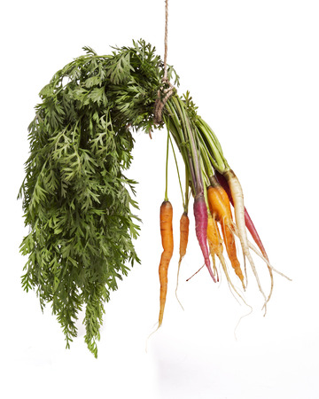 A bunch of fresh organic colored carrots hang against a white background.