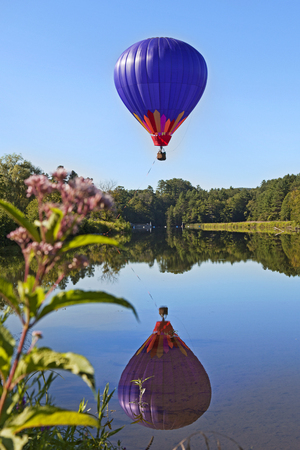 Hot Air Balloon over Pond with Flower in Foreground Banco de Imagens