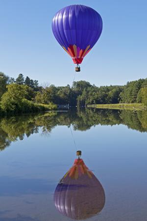 Hot Air Balloon Rising Above Trees