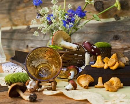 A still life of mushrooms and a cricket.