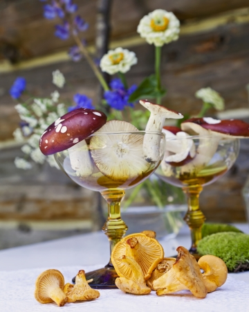 A still life with mushrooms in a cocktail glass.