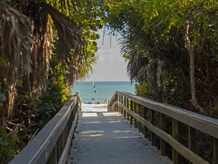 Entrance to a beach on a board walk through tropical brush.