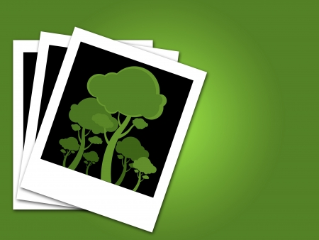 green trees in black canvas photo