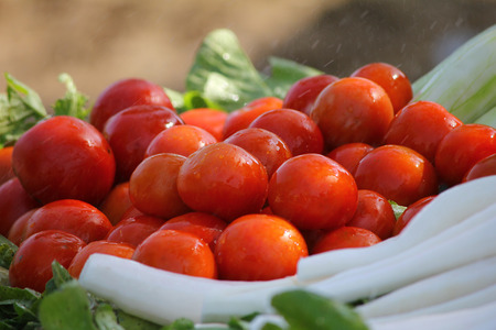 closeup photo of freshly harvested White radish with red tomatoes for salad Stock Photo
