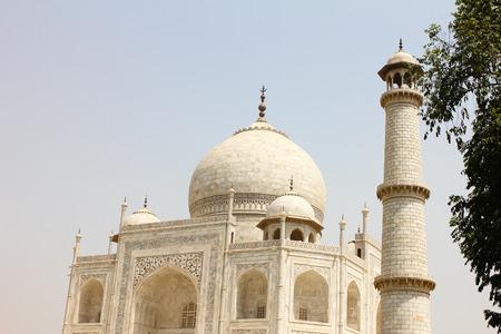 monument in india: Closeup of beautiful monument Taj Mahal, Agra, India