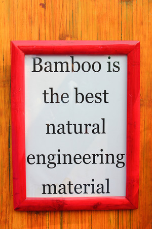 importance: White Frame with bamboo importance quote on stripe background