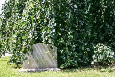 나무 가운데 묘지에 빈 묘비 스톡 콘텐츠