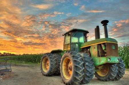 corn stalks: Tractor parked next to row of corn stalks. Stock Photo