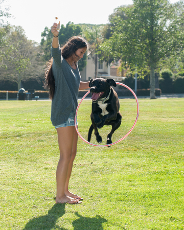 Teen girl and her Labrador jumping