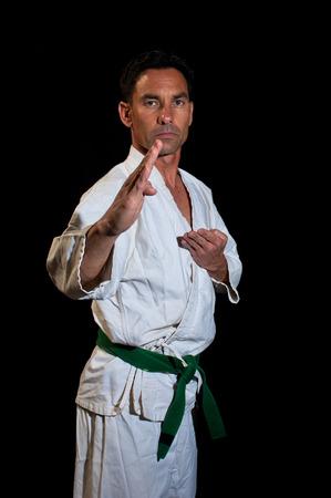 karateka: Karateka in knife hand stance Stock Photo