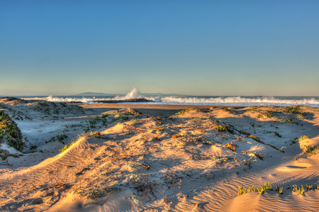 natures: Sand dunes on the beach are natures last barrier to the high surf.