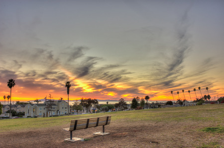 vibrance: Vacant park bench on grassy hill.