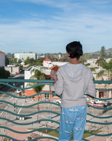overlooking: Rear view of teen girl overlooking downtown Ventura holding a chocolate chip donut.