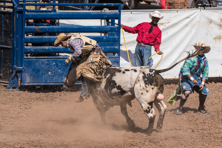Cowboy finds himself in a bad position too high on the bull during the bull riding at the Ventura County Fair on August 12, 2018 in California.