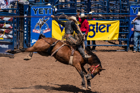 Cowboy counterbalances perfectly with body while riding the bucking bronco at the Ventura County Fair on August 12, 2018 in California.