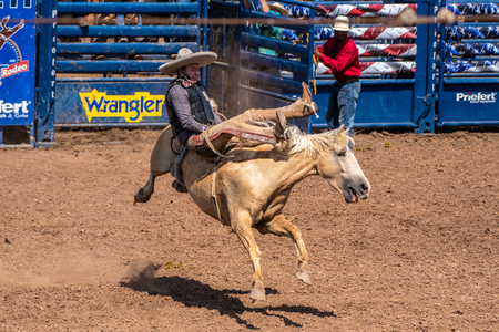 Charro cowboy counterbalances by leaning back with body while riding the bucking bronco at the Ventura County Fair on August 12, 2018 in California.