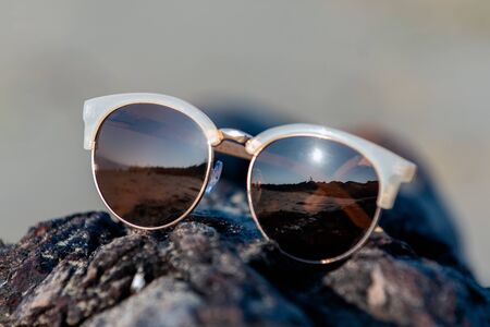 Contemporary sunglasses fashion shows aviator style dark tinted lenses while displayed on beach drifwood log texture.
