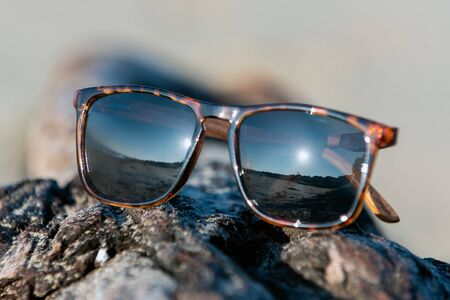 Contemporary sunglasses fashion shows leopard print style dark tinted reflective lenses while displayed on beach drifwood log texture.