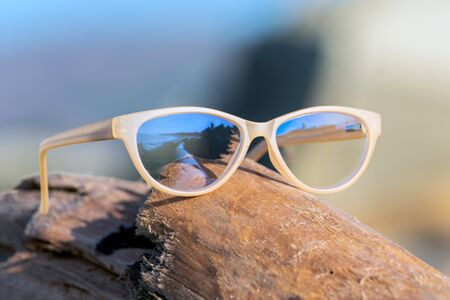 Contemporary uv protection fashion shows clear lenses reflecting dried driftwwod log lying on coastal beach shore.
