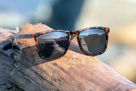 Contemporary sunglasses fashion shows leopard print dark lenses reflecting dried driftwwod log lying on sunny beach shore.