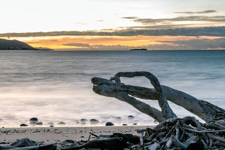 Driftwood logs left high and dry as the tide recedes down to the rocks with morning sunrise showing in the cloudy sky. Reklamní fotografie
