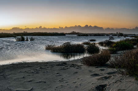 Ripples in the sandy shore of the pond glows as the sun begins to illuminate the eastern horizon of Ventura.