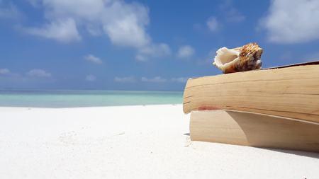 Maldives white sandy beach reading book seashell on sunny tropical paradise island with aqua blue sky sea water ocean 4k