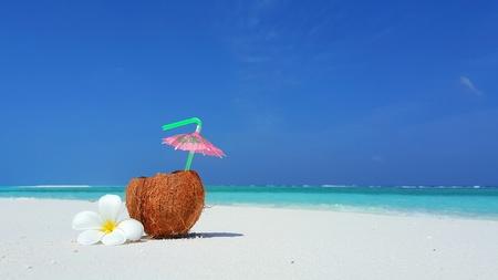 sandbank: P00742 Maldives white sandy beach coconut on sunny tropical paradise island with aqua blue sky sea ocean 4k