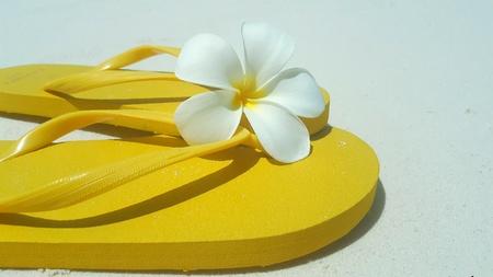 Maldives white sandy beach flip flops shoes on sunny tropical paradise island with aqua blue sky sea ocean 4k